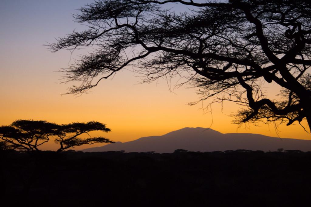 Crater + South Serengeti - Screen-43